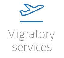 migratory services icon